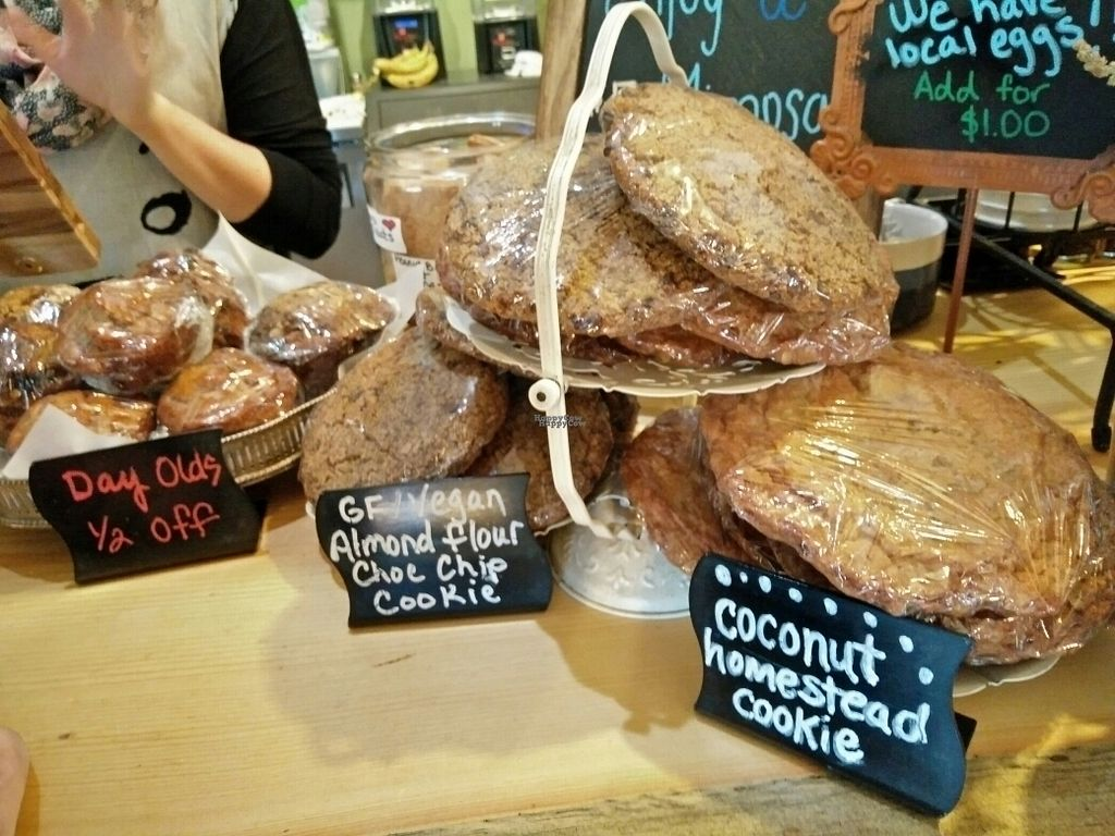 """Photo of Stellar Brew and Deli  by <a href=""""/members/profile/martinicontomate"""">martinicontomate</a> <br/>vegan gf cookies <br/> October 6, 2016  - <a href='/contact/abuse/image/21193/179987'>Report</a>"""