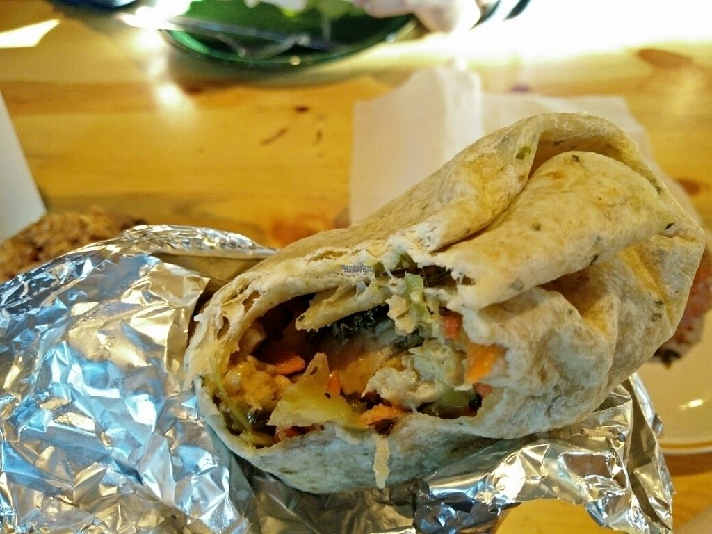 """Photo of Stellar Brew and Deli  by <a href=""""/members/profile/martinicontomate"""">martinicontomate</a> <br/>vegan burrito <br/> October 6, 2016  - <a href='/contact/abuse/image/21193/179988'>Report</a>"""