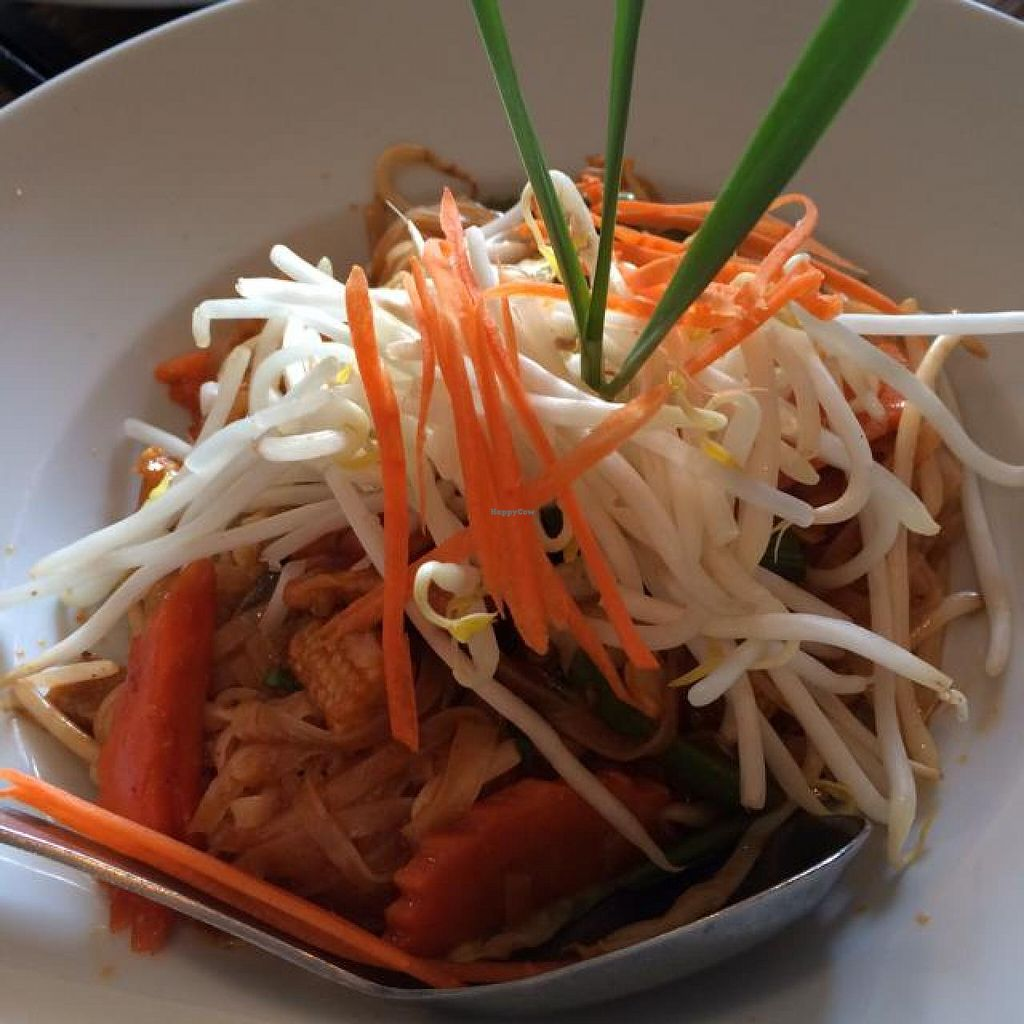 """Photo of CLOSED: Thai Idea Vegetarian  by <a href=""""/members/profile/AmeliaC"""">AmeliaC</a> <br/>Pad Thai- the presentation alone is amazing! <br/> June 11, 2014  - <a href='/contact/abuse/image/21231/71856'>Report</a>"""
