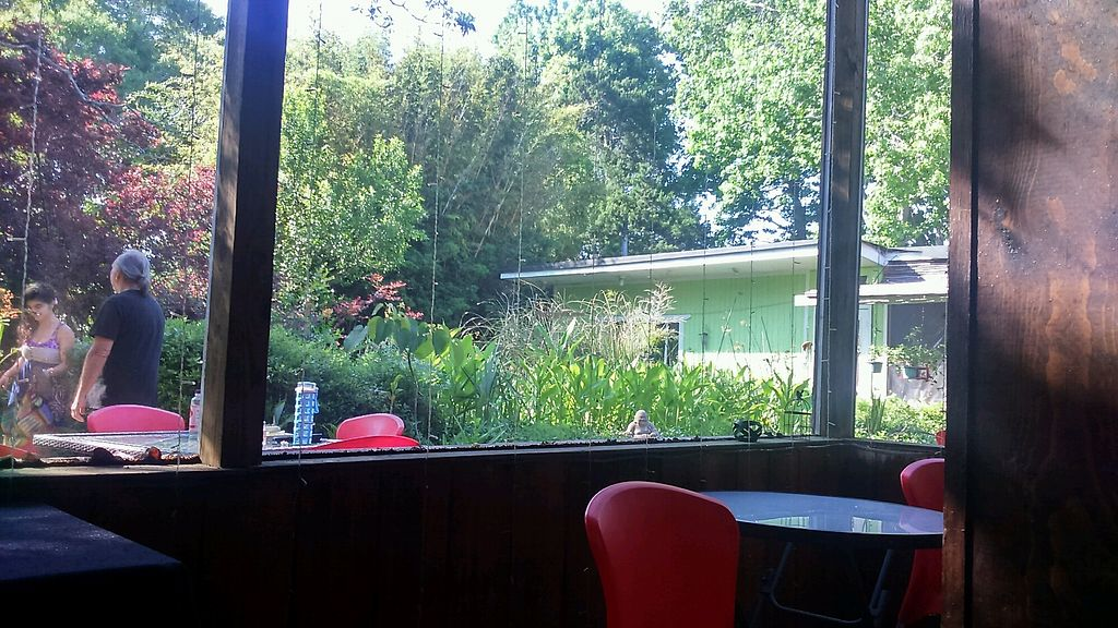 """Photo of Lotus Cafe  by <a href=""""/members/profile/JonathonCaton"""">JonathonCaton</a> <br/>Gardens  <br/> April 30, 2018  - <a href='/contact/abuse/image/21355/393233'>Report</a>"""