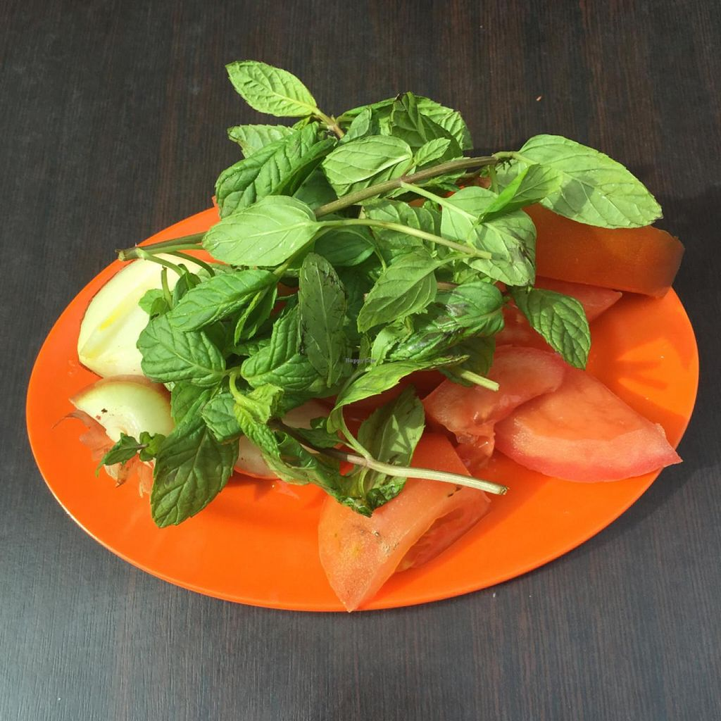 """Photo of Hashem  by <a href=""""/members/profile/vegetariangirl"""">vegetariangirl</a> <br/>sides of mint, tomato and onion  <br/> February 15, 2015  - <a href='/contact/abuse/image/21505/93044'>Report</a>"""