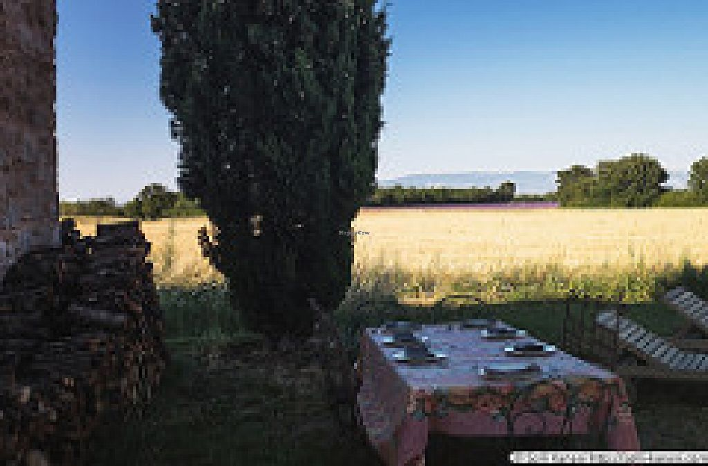 """Photo of La Vudele - Organic Provence  by <a href=""""/members/profile/organicprovence"""">organicprovence</a> <br/>dinner/table d'hôtes: fresh, organic, seasonal, regional <br/> January 18, 2016  - <a href='/contact/abuse/image/21596/132864'>Report</a>"""