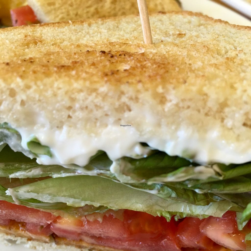 """Photo of Main Squeeze Natural Foods Cafe  by <a href=""""/members/profile/RikkiFox"""">RikkiFox</a> <br/>TLT (tempeh, lettuce, tomato). They should add a 'D' for delicious. I guess it's silent <br/> November 8, 2015  - <a href='/contact/abuse/image/2159/124362'>Report</a>"""