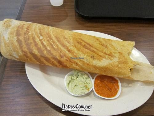 "Photo of Changi Airport T2 - Kaveri Vegetarian  by <a href=""/members/profile/cvxmelody"">cvxmelody</a> <br/>Masala dosa <br/> March 16, 2012  - <a href='/contact/abuse/image/21674/29467'>Report</a>"