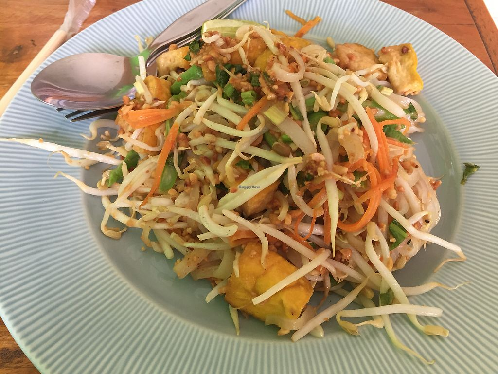 """Photo of Pattaya Vegetarian Food  by <a href=""""/members/profile/PaulBown"""">PaulBown</a> <br/>pad Thai  <br/> August 9, 2017  - <a href='/contact/abuse/image/21688/290735'>Report</a>"""