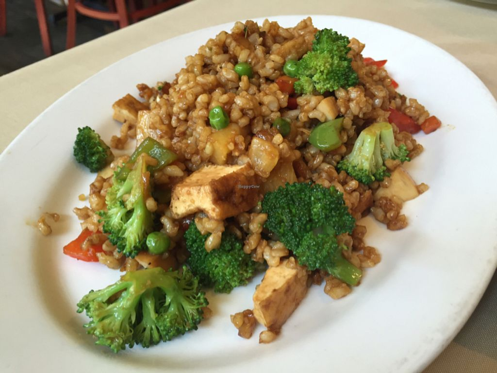 "Photo of Green Earth Vegan Cuisine  by <a href=""/members/profile/VeganCookieLover"">VeganCookieLover</a> <br/>Joyful fried rice  <br/> July 9, 2016  - <a href='/contact/abuse/image/21789/158674'>Report</a>"