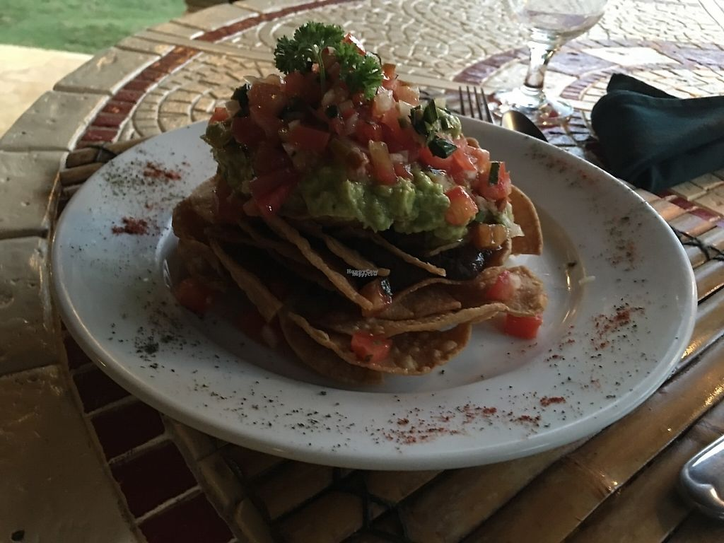 "Photo of Ylang Ylang Restaurant and Juice Bar  by <a href=""/members/profile/gwild"">gwild</a> <br/>Nachos <br/> February 12, 2017  - <a href='/contact/abuse/image/21806/225854'>Report</a>"