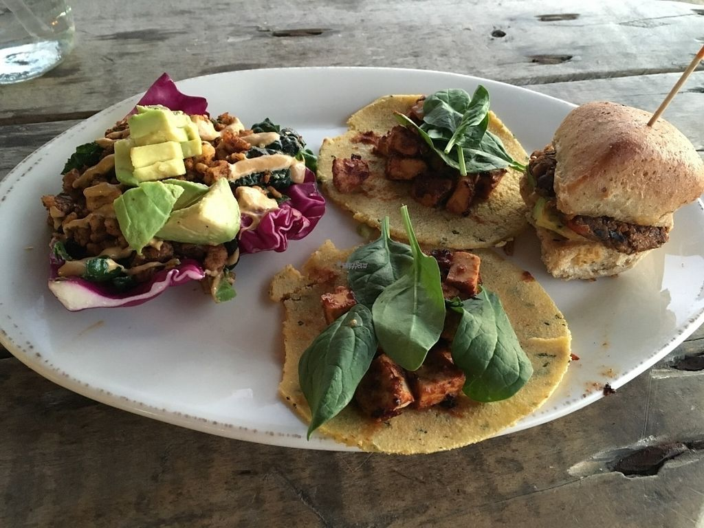 """Photo of Pomegranate Cafe - Chandler Blvd  by <a href=""""/members/profile/Tigra220"""">Tigra220</a> <br/>Happy Hour street tacos and slider (Fall/Winter 2015) <br/> August 7, 2016  - <a href='/contact/abuse/image/22101/166610'>Report</a>"""