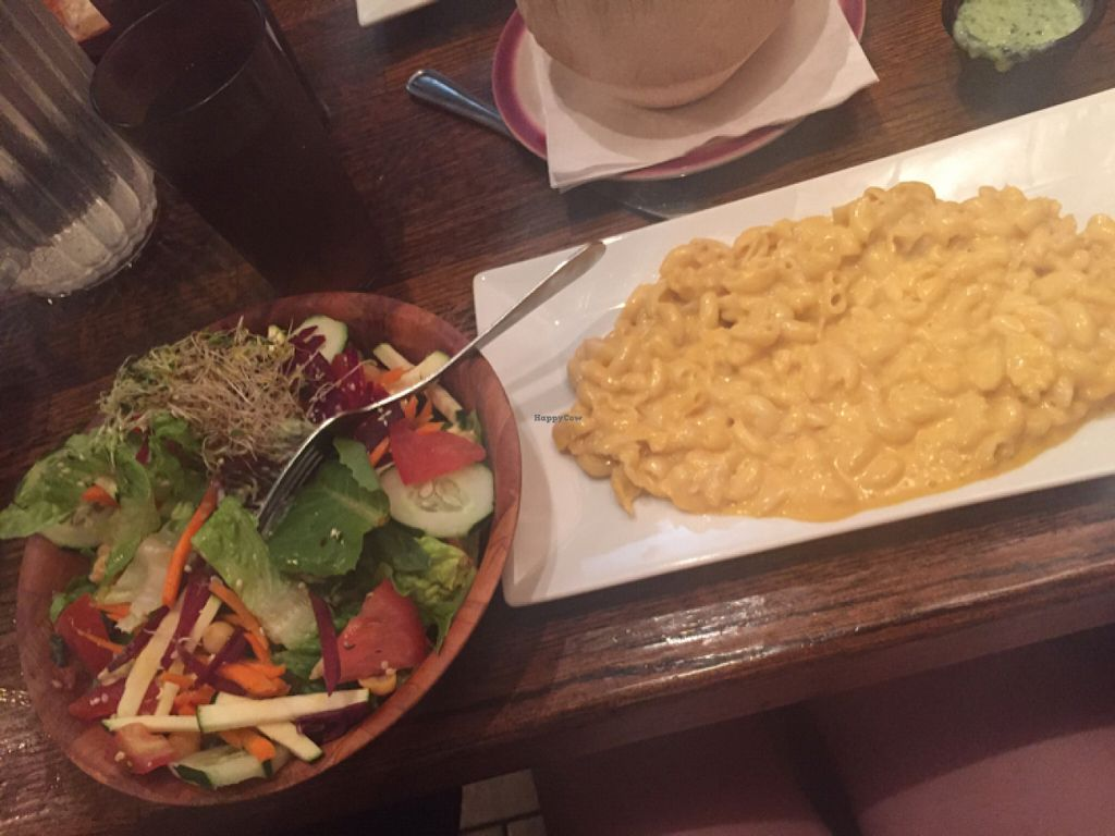 """Photo of Kaya's Kitchen  by <a href=""""/members/profile/lotusrkay"""">lotusrkay</a> <br/>best vegan restaurant ever. Mac and cheese was heavenly. I also recommend the pirogies. and your life will be changed after the cheese cake.  <br/> July 31, 2016  - <a href='/contact/abuse/image/2213/163668'>Report</a>"""