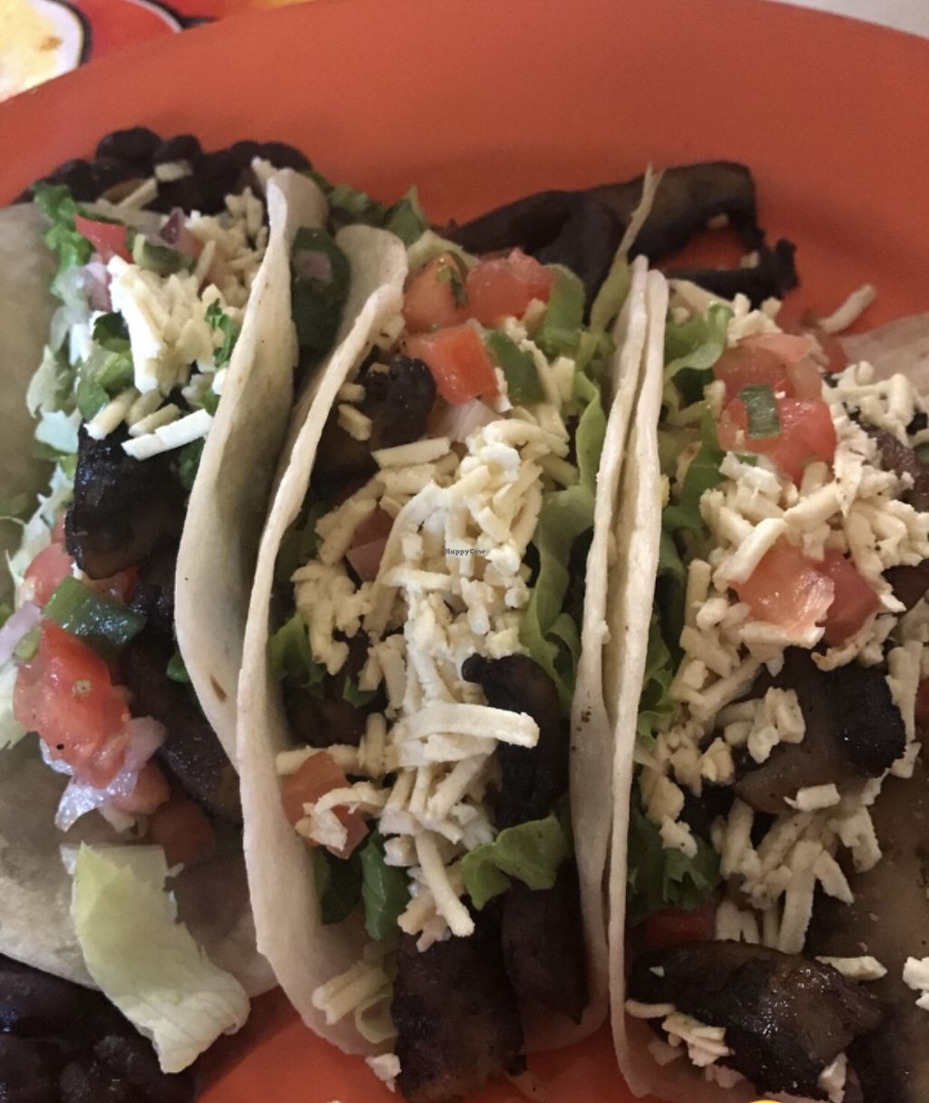 """Photo of Mother's Cantina  by <a href=""""/members/profile/MellMoreira"""">MellMoreira</a> <br/>3 taco meal - portobello mushrooms with pico, lettuce, pico, black beans, rice & vegan cheese  <br/> September 2, 2017  - <a href='/contact/abuse/image/22152/300196'>Report</a>"""
