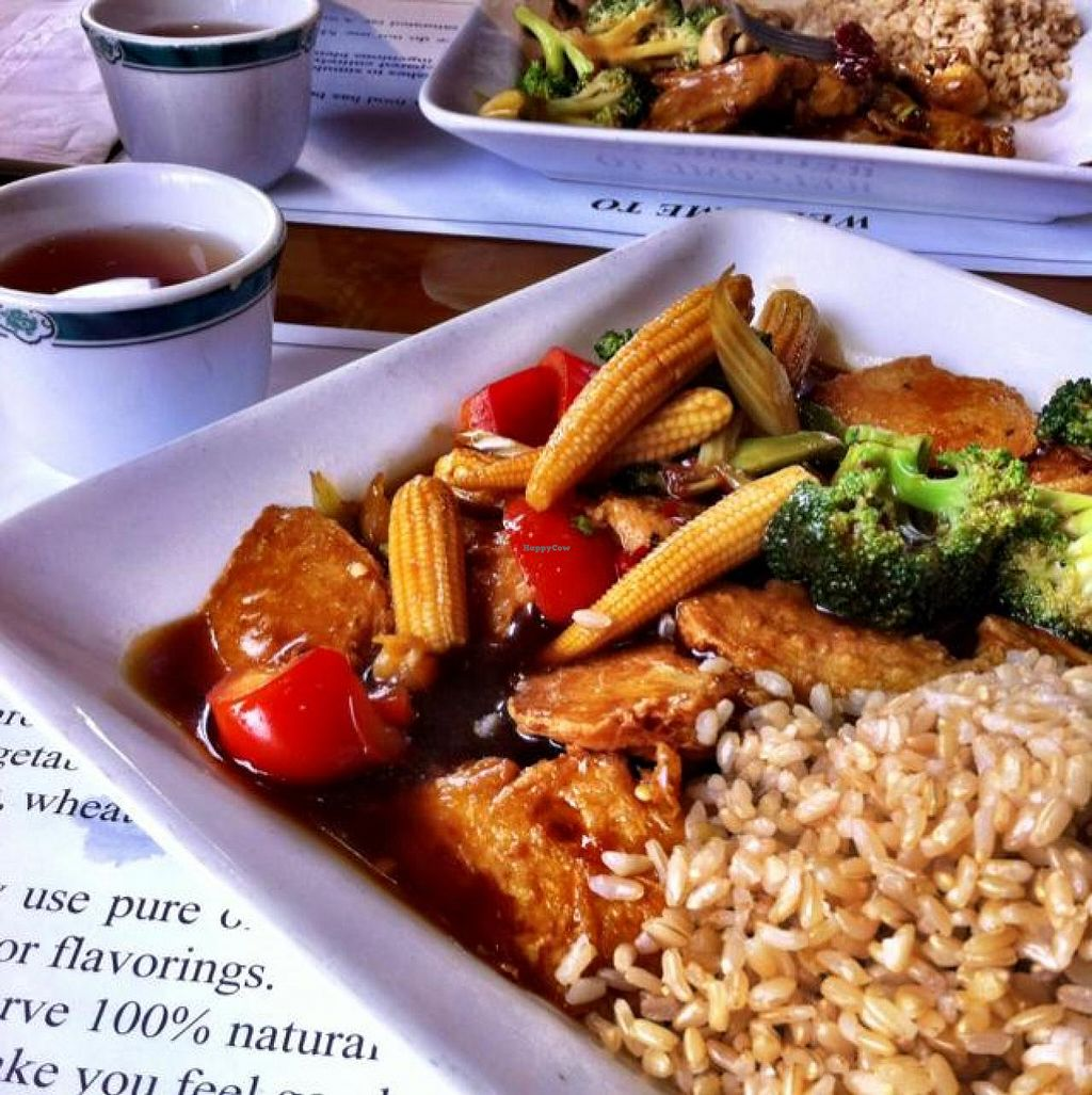 """Photo of Veggie Heaven  by <a href=""""/members/profile/KatelynCalautti"""" class=""""title__title"""">KatelynCalautti</a> <br/>General Tao chicken <br/> July 19, 2014  - <a href='/contact/abuse/image/2231/74494'>Report</a>"""