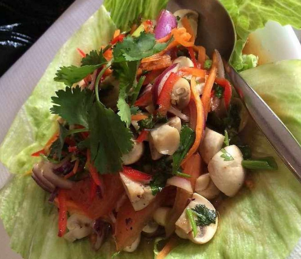 """Photo of Thai Village  by <a href=""""/members/profile/CiaraSlevin"""">CiaraSlevin</a> <br/>mushroom salad <br/> August 15, 2015  - <a href='/contact/abuse/image/22338/239747'>Report</a>"""