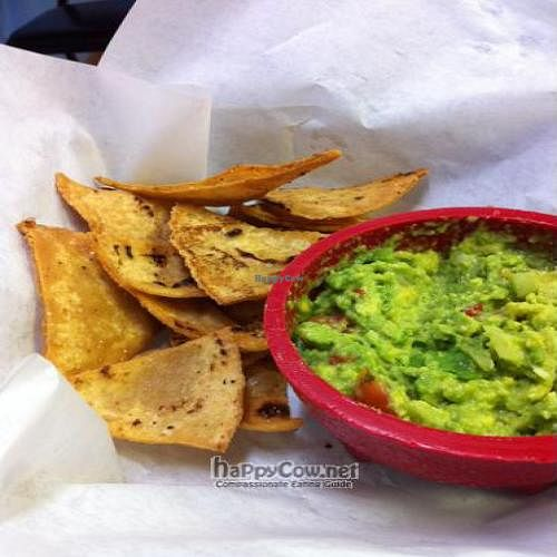 """Photo of CLOSED: Radical Eats  by <a href=""""/members/profile/windysgarden"""">windysgarden</a> <br/>Guacamole and hand fried tortilla chips. Radical Eats, Houston, TX <br/> September 2, 2011  - <a href='/contact/abuse/image/22467/10388'>Report</a>"""