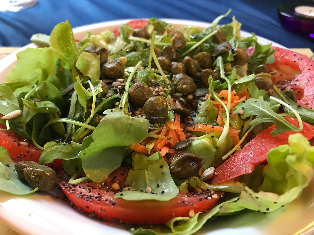 """Photo of Veg and Veg  by <a href=""""/members/profile/NatalieDowelMcIntosh"""">NatalieDowelMcIntosh</a> <br/>delicious salad  <br/> August 4, 2017  - <a href='/contact/abuse/image/22503/288800'>Report</a>"""