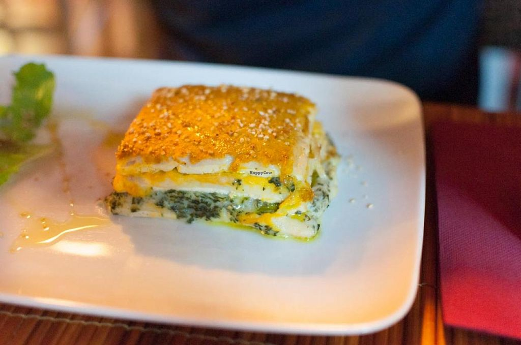 """Photo of Vegamore  by <a href=""""/members/profile/Vegan%20Sheep"""">Vegan Sheep</a> <br/>Tofu lasagna <br/> October 1, 2014  - <a href='/contact/abuse/image/22571/81778'>Report</a>"""