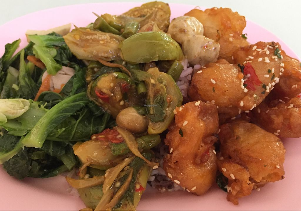 "Photo of Tien Sin - Si Wiang  by <a href=""/members/profile/VeganMush"">VeganMush</a> <br/>stir fry green veg with mushrooms, spicy eggplant curry and fried mock meat pieces all served on rice <br/> August 16, 2017  - <a href='/contact/abuse/image/22664/293123'>Report</a>"