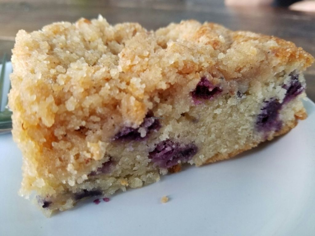 "Photo of Wandering Goat Coffee Co.  by <a href=""/members/profile/EverydayTastiness"">EverydayTastiness</a> <br/>Blueberry coffee cake <br/> June 13, 2016  - <a href='/contact/abuse/image/22666/153724'>Report</a>"