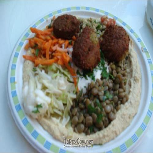 """Photo of CLOSED: Yes! Veggie  by <a href=""""/members/profile/veganlondon"""">veganlondon</a> <br/>Falafel salad <br/> July 7, 2010  - <a href='/contact/abuse/image/22767/5070'>Report</a>"""