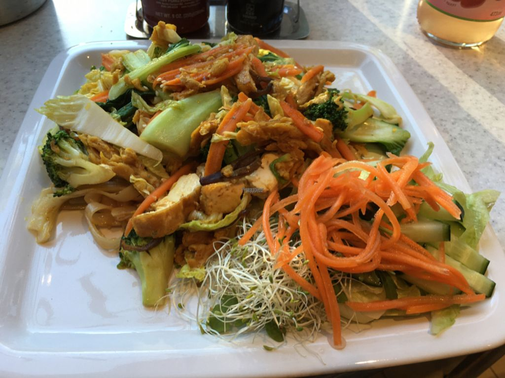 """Photo of Loving Hut - Fredenborgsveien  by <a href=""""/members/profile/Windlekins"""">Windlekins</a> <br/>Pad Thai <br/> August 16, 2016  - <a href='/contact/abuse/image/22910/169289'>Report</a>"""