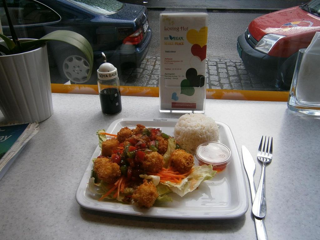 """Photo of Loving Hut - Fredenborgsveien  by <a href=""""/members/profile/imogenmichel"""">imogenmichel</a> <br/>Crispy tofu with lemon on salad leaves with rice <br/> July 23, 2014  - <a href='/contact/abuse/image/22910/74784'>Report</a>"""