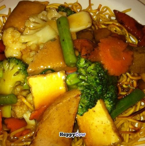 "Photo of Divine Realm Vegie Delight  by <a href=""/members/profile/Aloo"">Aloo</a> <br/>combination noodles <br/> September 23, 2013  - <a href='/contact/abuse/image/22948/55573'>Report</a>"