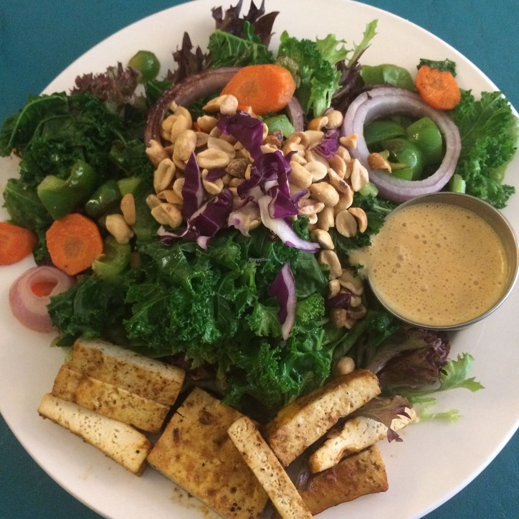 "Photo of Guadalupe Cafe  by <a href=""/members/profile/ashi81"">ashi81</a> <br/>Gado Gado salad with tofu <br/> December 13, 2015  - <a href='/contact/abuse/image/22949/128203'>Report</a>"