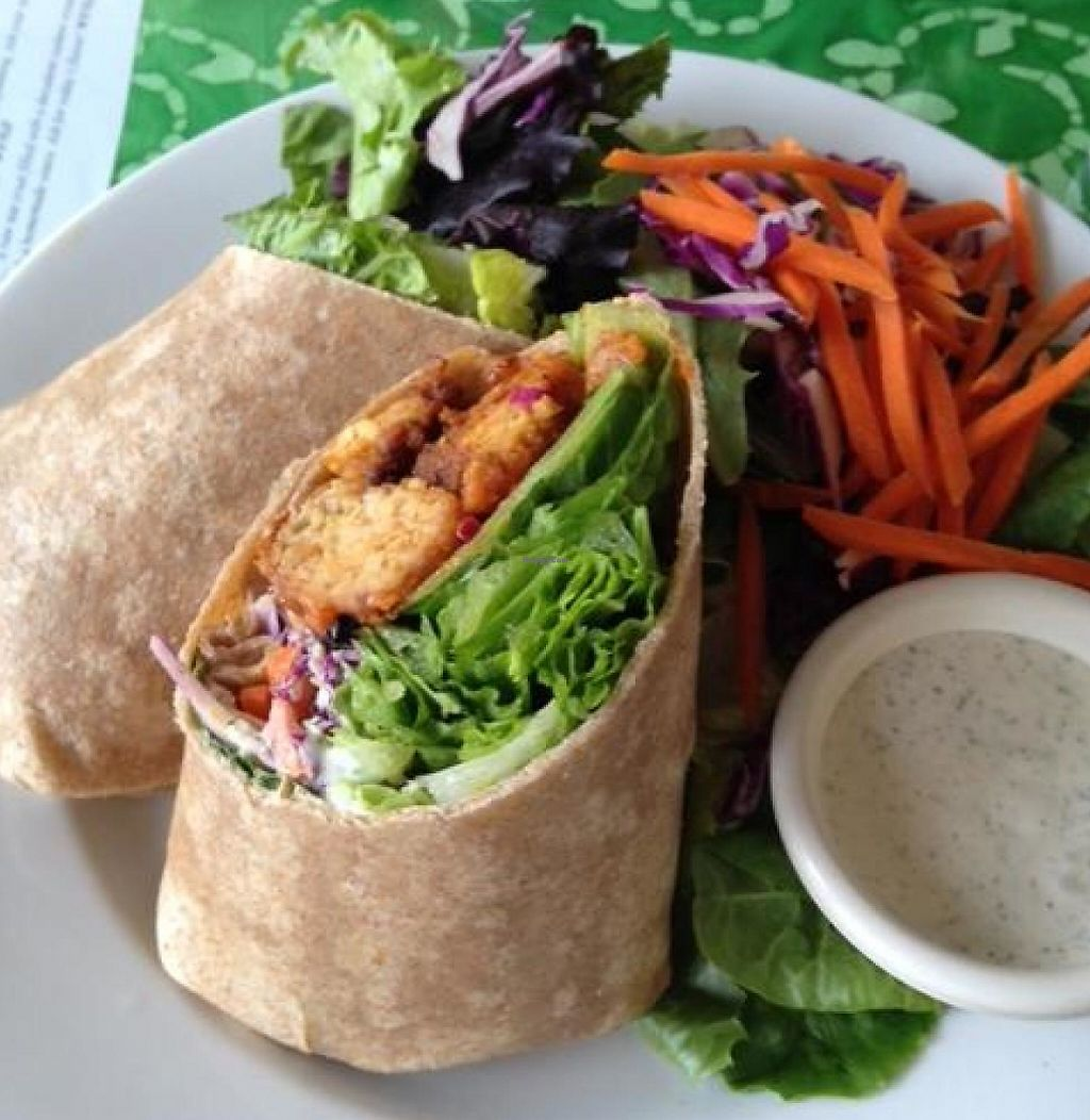 "Photo of Good Karma Cafe  by <a href=""/members/profile/veganin2014"">veganin2014</a> <br/>Buffalo Soldier Wrap - YUMMY <br/> May 14, 2014  - <a href='/contact/abuse/image/22992/208882'>Report</a>"
