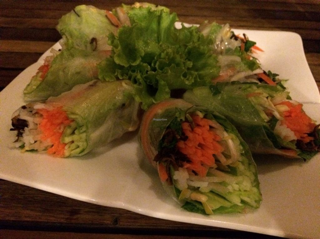 "Photo of The Vegetarian  by <a href=""/members/profile/Siup"">Siup</a> <br/>fresh summer rolls <br/> December 21, 2015  - <a href='/contact/abuse/image/23003/129383'>Report</a>"