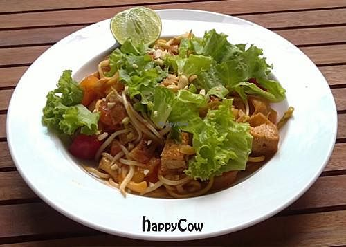 "Photo of The Vegetarian  by <a href=""/members/profile/Kiko"">Kiko</a> <br/>Indian fried noodle <br/> August 12, 2012  - <a href='/contact/abuse/image/23003/35966'>Report</a>"