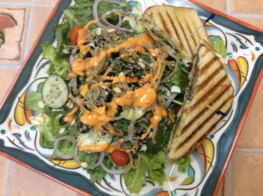 """Photo of Livity Vegetarian Take-out and Juice Bar  by <a href=""""/members/profile/JayRolle"""">JayRolle</a> <br/>PANINI & SALAD!! <br/> June 16, 2015  - <a href='/contact/abuse/image/23019/106133'>Report</a>"""