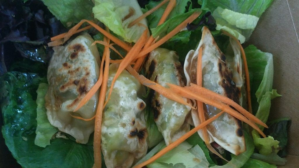 "Photo of Thai Vegan  by <a href=""/members/profile/mawolosz"">mawolosz</a> <br/>Veggie Dumplings <br/> July 3, 2017  - <a href='/contact/abuse/image/23089/276405'>Report</a>"