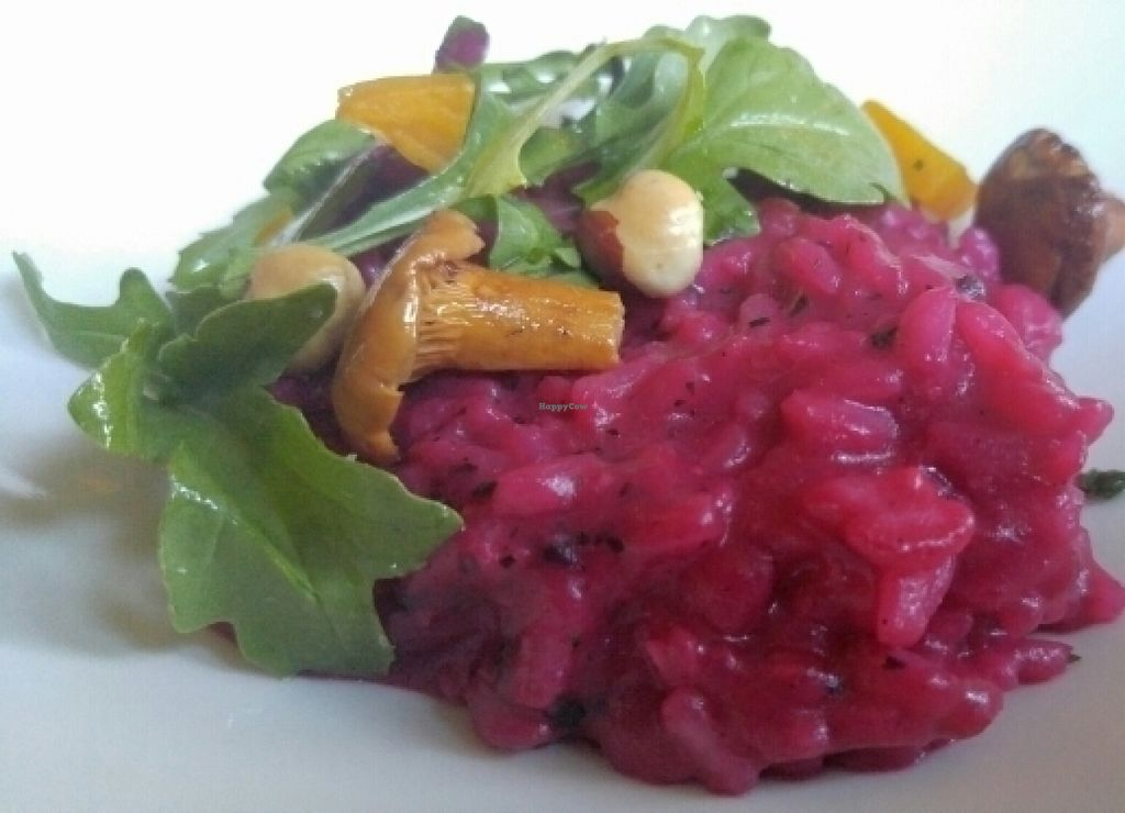 "Photo of Tilth  by <a href=""/members/profile/The%20Hungry%20Vegan"">The Hungry Vegan</a> <br/>Vegan Red Beet Risotto with Chanterelle, Arugula, and Holmquist Hazelnut <br/> July 30, 2016  - <a href='/contact/abuse/image/23116/163495'>Report</a>"