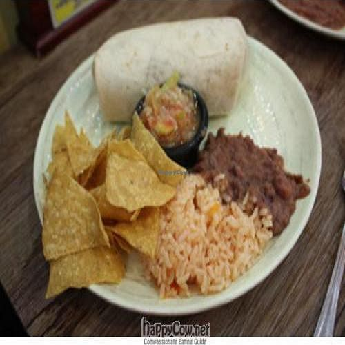 """Photo of Taco Amigo - 타코 아미고  by <a href=""""/members/profile/louispdeville"""">louispdeville</a> <br/>Burrito meal for about 10,000 won <br/> August 1, 2010  - <a href='/contact/abuse/image/23132/5368'>Report</a>"""