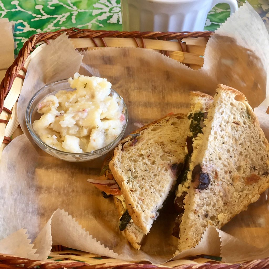 """Photo of Silke's Old World Breads  by <a href=""""/members/profile/happycowgirl"""">happycowgirl</a> <br/>vegan Mediterranean sandwich <br/> February 9, 2017  - <a href='/contact/abuse/image/23158/224610'>Report</a>"""