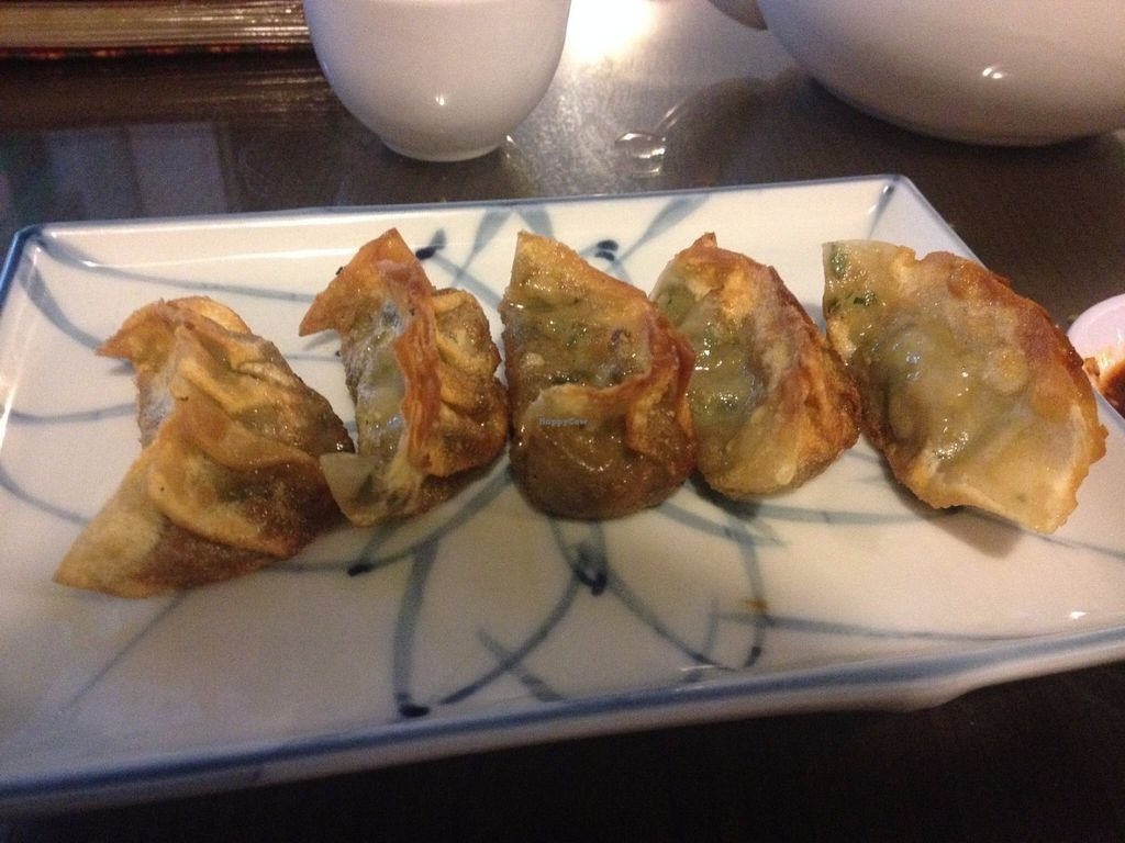 """Photo of Evergreen Vegetarian and Cafe House  by <a href=""""/members/profile/vegan_ryan"""">vegan_ryan</a> <br/>Fried dumplings <br/> July 18, 2016  - <a href='/contact/abuse/image/23190/160608'>Report</a>"""