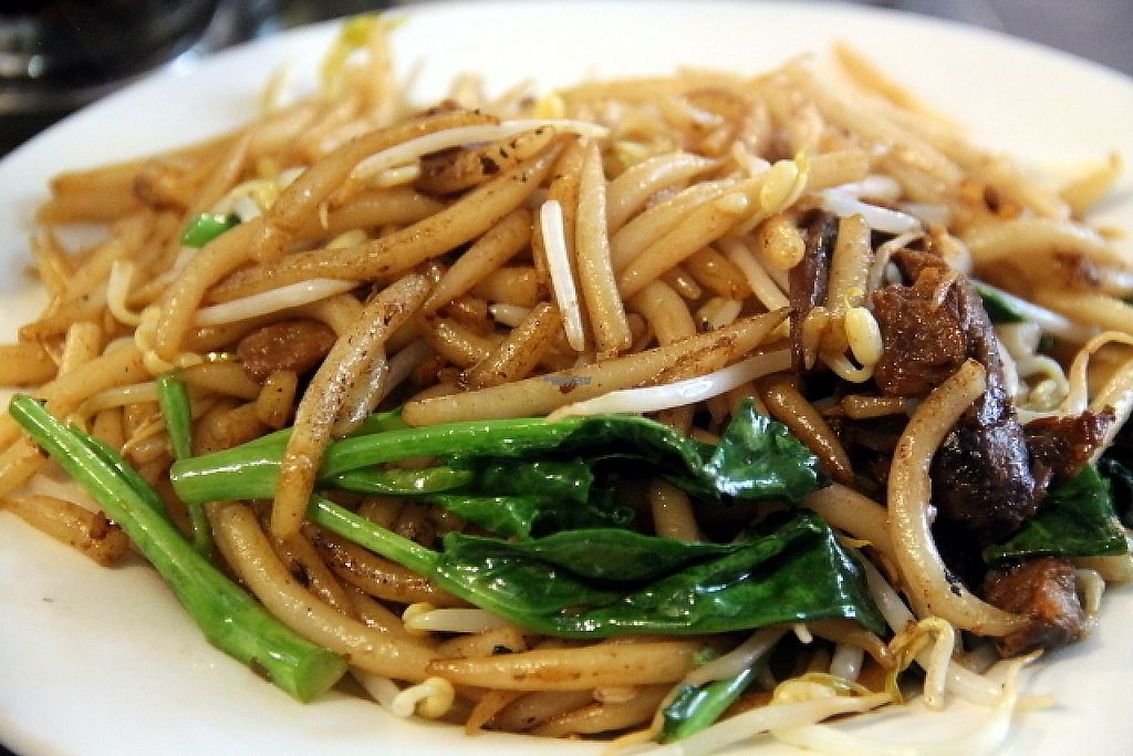"""Photo of Evergreen Vegetarian and Cafe House  by <a href=""""/members/profile/reissausta%20ja%20ruokaa"""">reissausta ja ruokaa</a> <br/>Fried noodles.  <br/> December 19, 2016  - <a href='/contact/abuse/image/23190/202967'>Report</a>"""