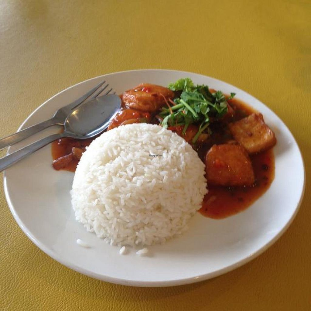 "Photo of Tian Pin Vegetarian Restaurant  by <a href=""/members/profile/AndyT"">AndyT</a> <br/>Sizzling beancurd rice (lunch set) <br/> May 5, 2014  - <a href='/contact/abuse/image/23374/69452'>Report</a>"