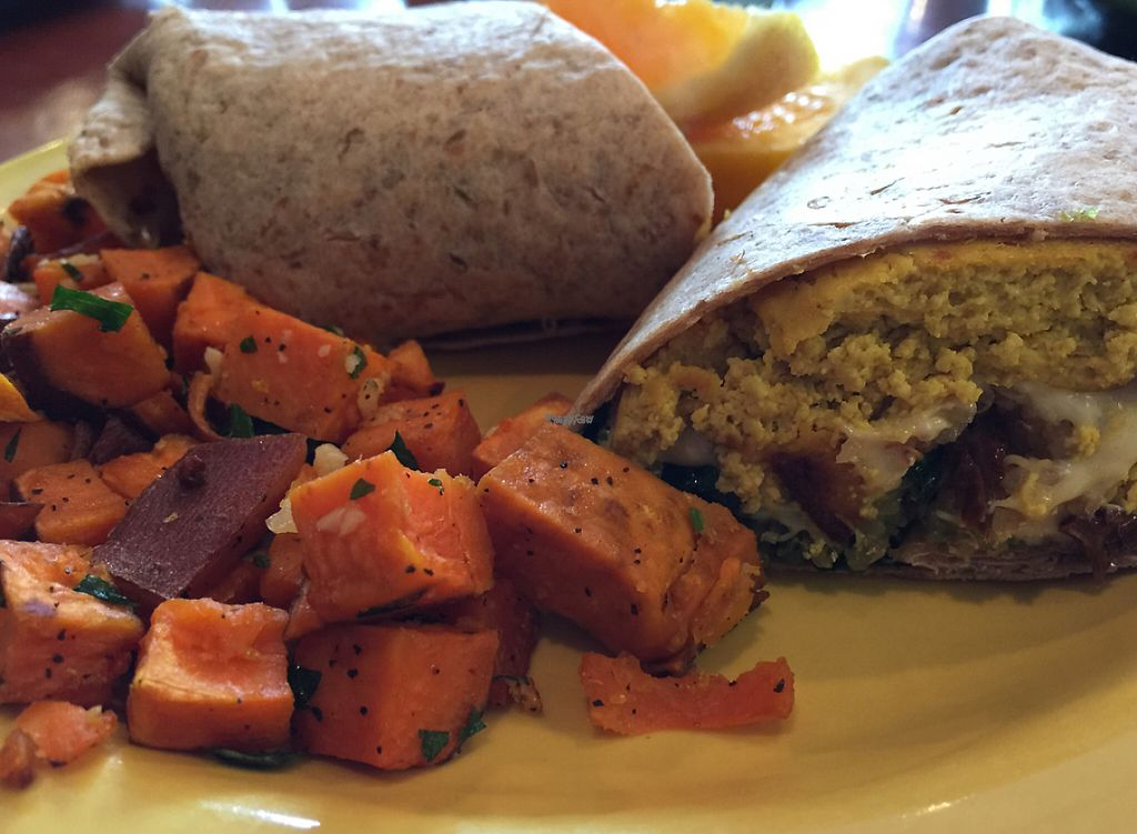 "Photo of Salvation Cafe  by <a href=""/members/profile/Withwideyes"">Withwideyes</a> <br/>vegan tofu scramble with daiya cheese breakfast wrap <br/> October 24, 2016  - <a href='/contact/abuse/image/23432/224015'>Report</a>"