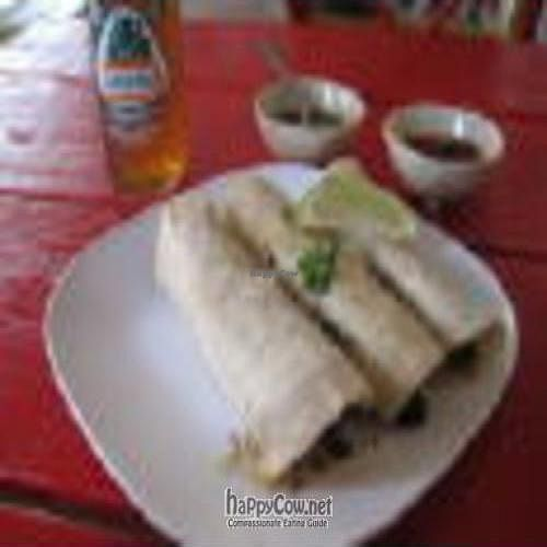 "Photo of Tortilleria Nixtamal  by <a href=""/members/profile/rmark25"">rmark25</a> <br/>Rajas & Avacado Tacos <br/> August 20, 2010  - <a href='/contact/abuse/image/23493/5575'>Report</a>"