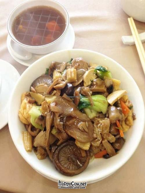 """Photo of Lotus Veggie  by <a href=""""/members/profile/JChan"""">JChan</a> <br/> June 1, 2012  - <a href='/contact/abuse/image/23498/32656'>Report</a>"""