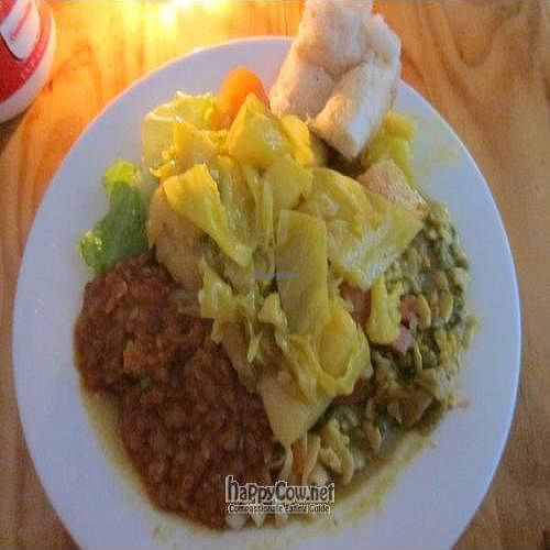 """Photo of CLOSED: Lentil As Anything - Footscray   by <a href=""""/members/profile/cvxmelody"""">cvxmelody</a> <br/>Dinner buffet plate <br/> June 26, 2011  - <a href='/contact/abuse/image/23571/9395'>Report</a>"""