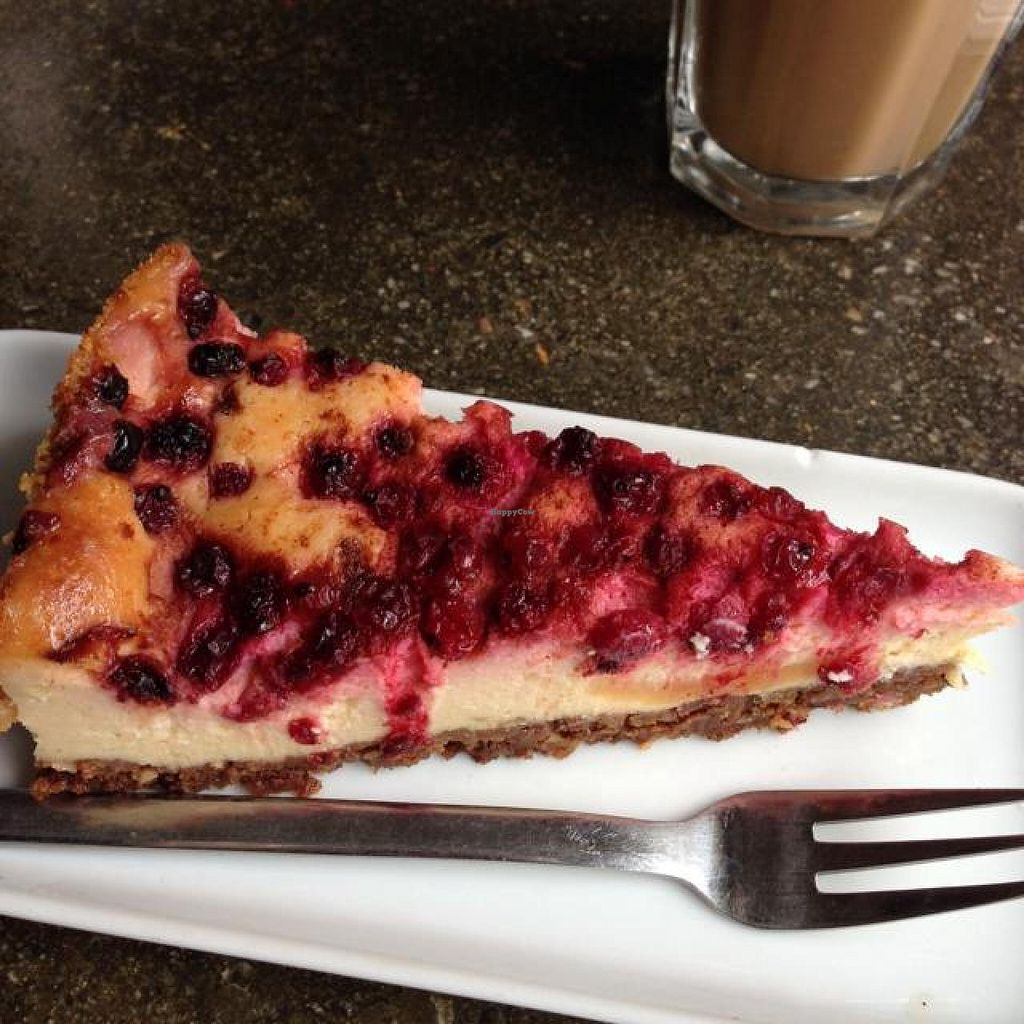 """Photo of Deli  by <a href=""""/members/profile/wrathofmanatee"""">wrathofmanatee</a> <br/>baked cheesecake <br/> May 9, 2014  - <a href='/contact/abuse/image/23733/69703'>Report</a>"""