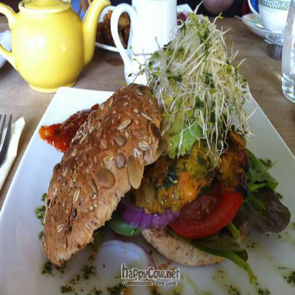 """Photo of CLOSED: Attic Cafe  by <a href=""""/members/profile/Jo%20Kay"""">Jo Kay</a> <br/>Sweet potato and vegetable burger in a wholegrain seeded bap with avocado, alfalfa and relish <br/> September 8, 2010  - <a href='/contact/abuse/image/23741/5794'>Report</a>"""