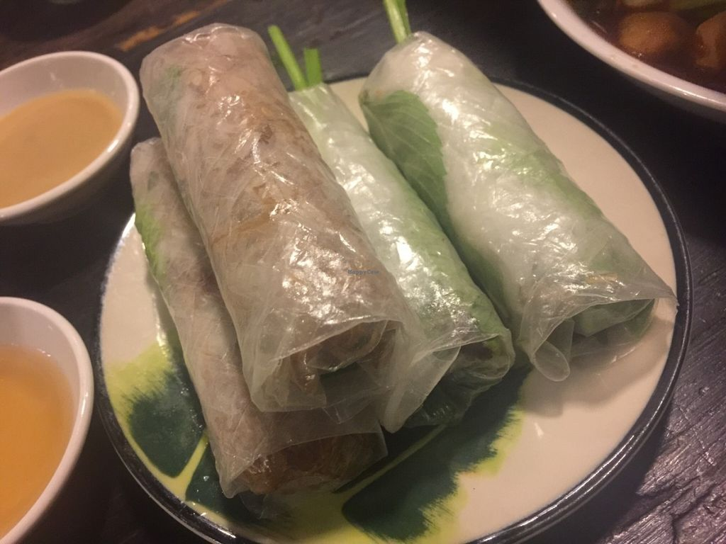 "Photo of Saigon Vegan - Vo Van Tan  by <a href=""/members/profile/Tiggy"">Tiggy</a> <br/>Fresh Spring rolls - July 2016 <br/> July 30, 2016  - <a href='/contact/abuse/image/23813/163260'>Report</a>"