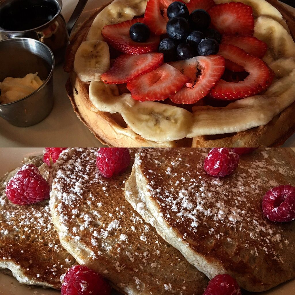 "Photo of Freesoulcaffe  by <a href=""/members/profile/xmrfigx"">xmrfigx</a> <br/>Waffles and pancakes <br/> June 8, 2016  - <a href='/contact/abuse/image/23953/152938'>Report</a>"