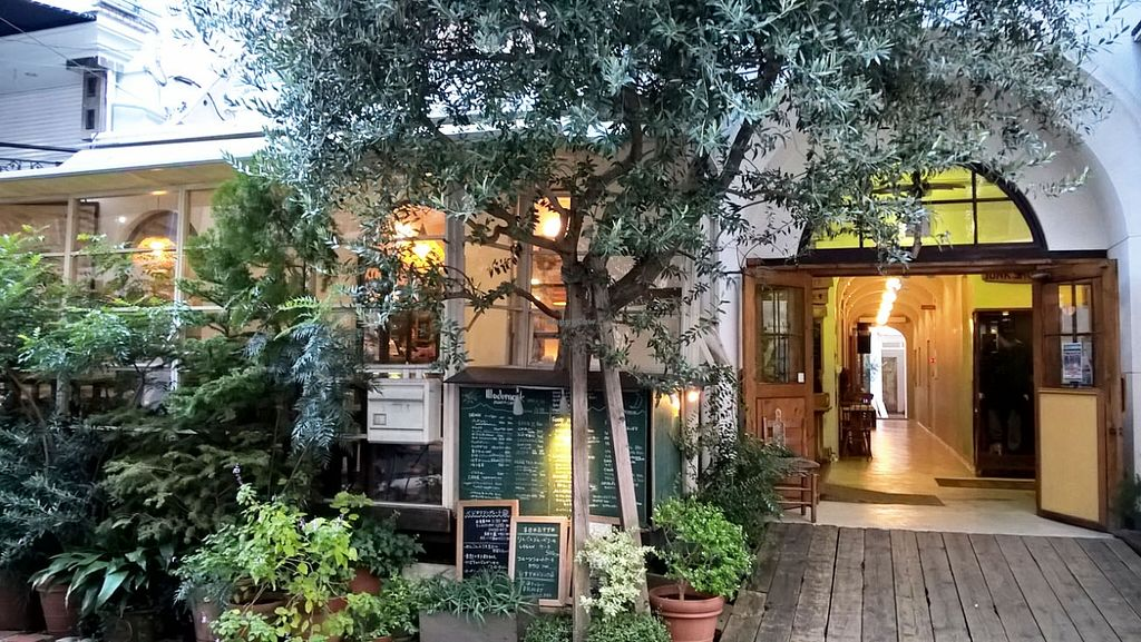 """Photo of Modernark  by <a href=""""/members/profile/p4V_"""">p4V_</a> <br/>Street frontage covered in foliage. Outdoor seating/ smokers area behind.   <br/> November 22, 2015  - <a href='/contact/abuse/image/23973/125790'>Report</a>"""