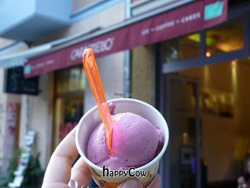 "Photo of Caramello Eisdiele  by <a href=""/members/profile/Nihacc"">Nihacc</a> <br/>Vegan cassis ice-cream <br/> May 15, 2013  - <a href='/contact/abuse/image/23980/48213'>Report</a>"