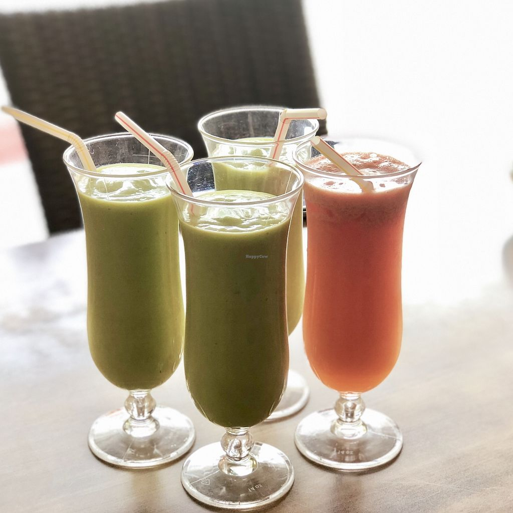 """Photo of Nature Vegetarian Restaurant  by <a href=""""/members/profile/CherylQuincy"""">CherylQuincy</a> <br/>Avocado juice and mixed fruit juice  <br/> February 27, 2018  - <a href='/contact/abuse/image/24050/364346'>Report</a>"""