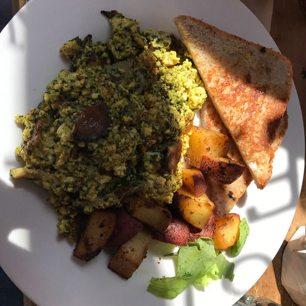 """Photo of Local Sprouts Cafe  by <a href=""""/members/profile/ryandotdavis"""">ryandotdavis</a> <br/>awesome scramble  <br/> April 9, 2017  - <a href='/contact/abuse/image/24091/246255'>Report</a>"""