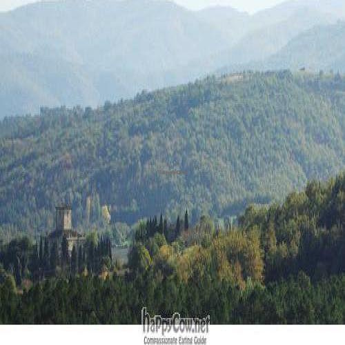 "Photo of Tenuta Savorgnano  by <a href=""/members/profile/Jonathan%20Smith"">Jonathan Smith</a> <br/>Monte Rognosi Nature Reserve: Good walking neat Tenuta Savorgnano <br/> December 22, 2010  - <a href='/contact/abuse/image/24111/6784'>Report</a>"